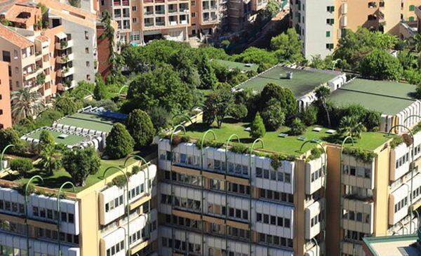 Sustainability Externships